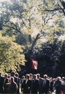 1988 processie 12