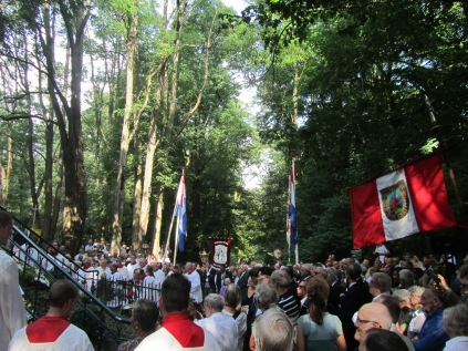 2016 Rosa Processie